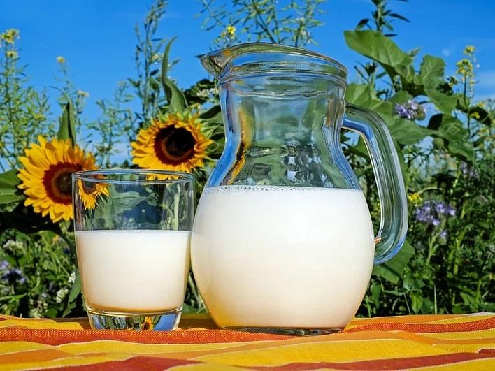 Россельхознадзор: согласован ветсертификат наэкспорт молочной продукции вЕгипет